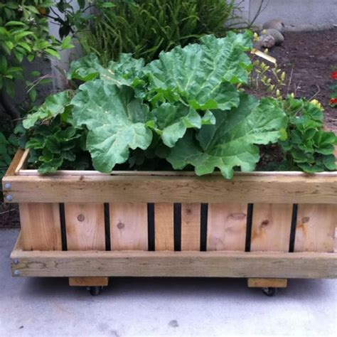 rolling raised garden beds pin by sue oc on garden