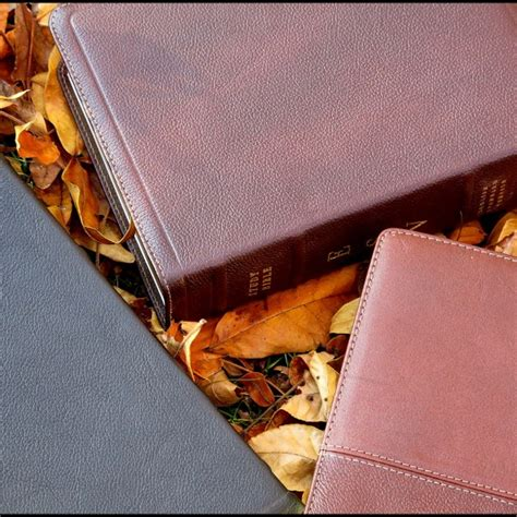 Esv Study Bible Cowhide crossway esv study bible cowhide brown evangelicalbible