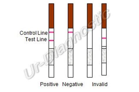 5 one step fob fecal occult blood test strips made in