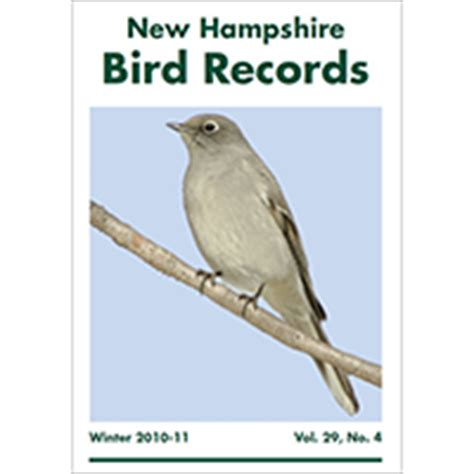 new hshire bird records subscription nh audubon