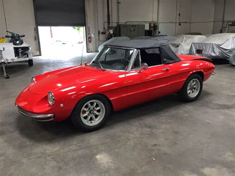 1969 Alfa Romeo 1969 Alfa Romeo Duetto Spider For Sale Photos