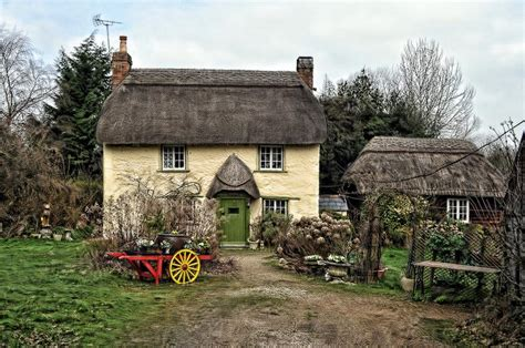 New Forest Cottage by New Forest Cottage Pixdaus
