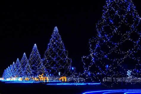 imagenes hermosas de navidad grandes grandes 225 rboles con luces azules en navidad 46783