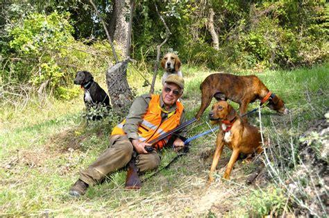 alimentazione cani da caccia cani da caccia al cinghiale quot in prima linea quot caccia