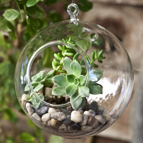 home and garden home improvement ideas