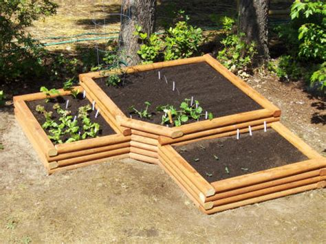 raised bed vegetable garden plans self sufficient living