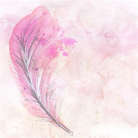 water color feather watercolor feather scrapbook 183 free image on pixabay