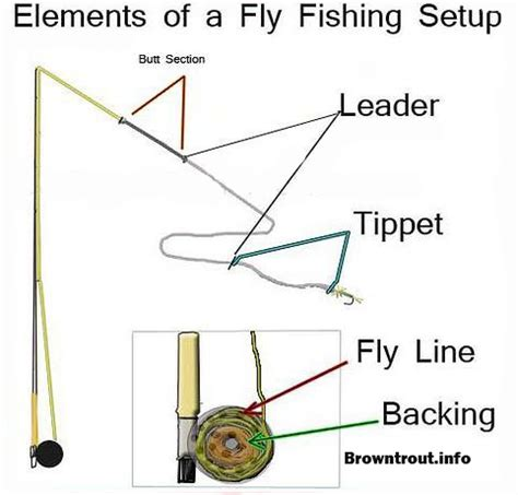 fishing rod parts diagram fly fishing basics the backing line leader and tippet
