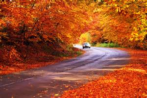 In Fall trader vacations reviews 3 stunning new england fall drives to take