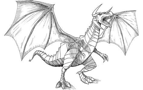 dragones imagenes de dragones dragon fotos dibujos e dibujos de dragones dedragones net