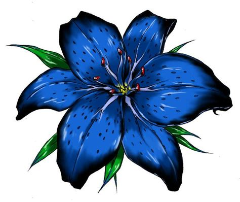 lily clipart blue pencil and in color lily clipart blue