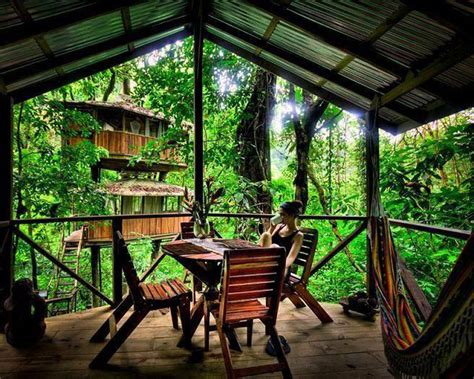 Treehouse Community | finca bellavista a sustainable treehouse community costa