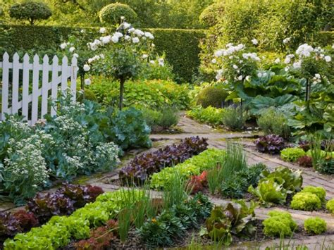Beautiful Vegetable Gardens Plus Design Tips And Ideas Beautiful Vegetable Garden Pictures