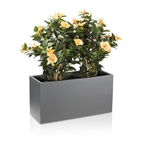 piante in vaso da esterno vaso per piante fioriera vaso per fiori visio in fibra di