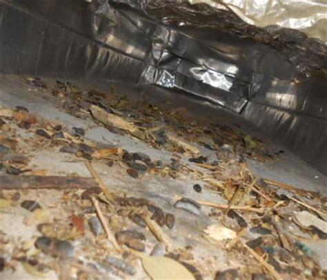 upholstery prescott az air duct cleaning prescott az servpro of yavapai county