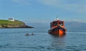 blasket island boat tours peig fungie