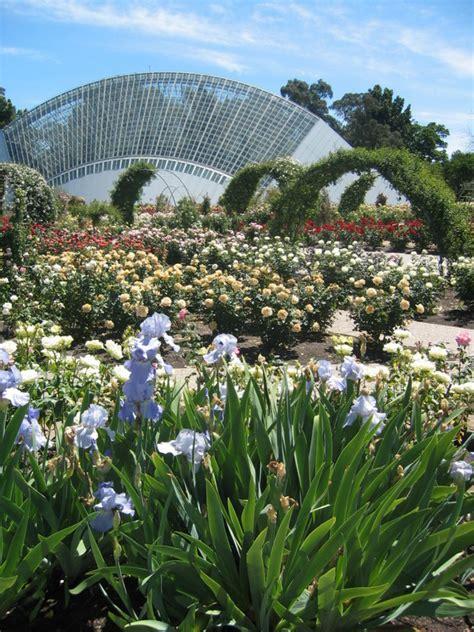botanic gardens of adelaide botanic gardens adelaide