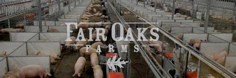 Georgetown Part Time Mba Ranking by Georgetown Mbas Visit Fair Oaks Farms Metromba