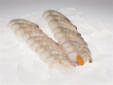 len versand garnelenspie 223 e fisch zum grillen fisch lachskontor