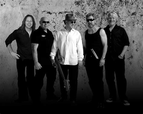 credicard facebook creedence clearwater revisited credicard hall domingo