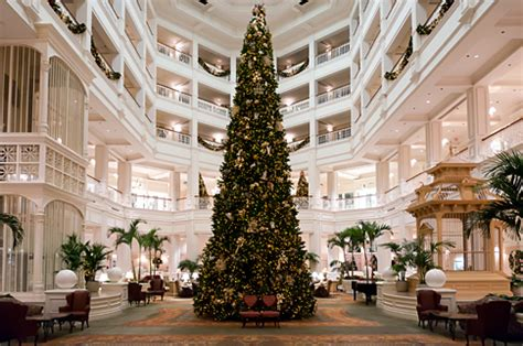 grand floridian christmas tree tree at disney s grand floridian resort picture this