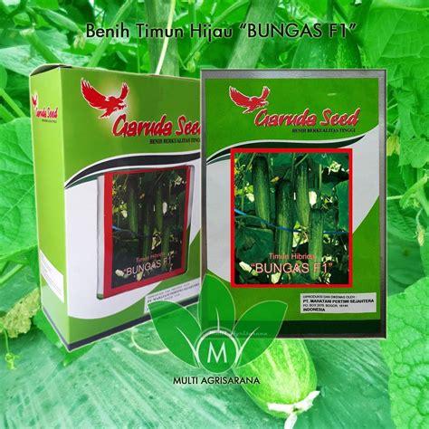 Benih Bibit Tanaman Pertanian Mentimun Timun Magic F1 800 Btr Murah jual benih timun hijau f1 quot bungas quot harga murah bogor oleh multi agri sarana