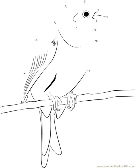 yellowhammer coloring page simpal yellowhammer dot to dot printable worksheet