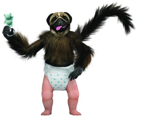 mountain dew puppy monkey baby puppymonkeybaby from mountain dew bowl ad is now a doll