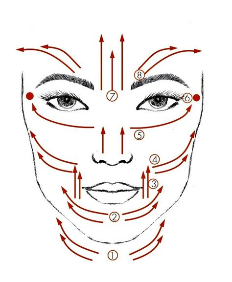 face mapping on pinterest estheticians facial massage diagram showing a facial massage routine that you can