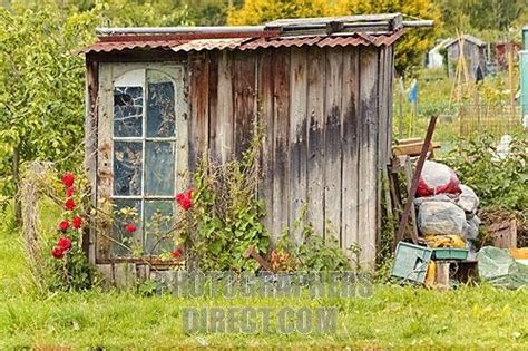 American Summer Shed by 17 Best Images About Tom S Cabin Sheds On