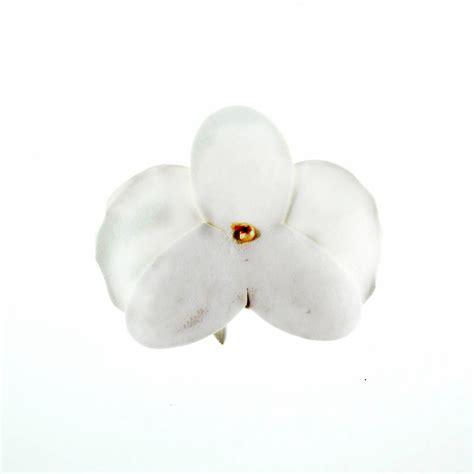 Orchid Floral Foam by Vanda Orchid Foam Flower