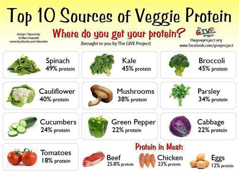 Sources Of Protein by Top 10 Sources Of Veggie Protein Diet