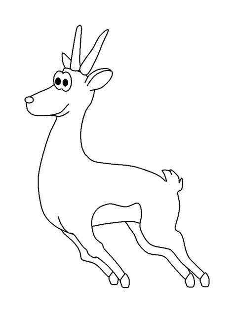 newt coloring page coloring home