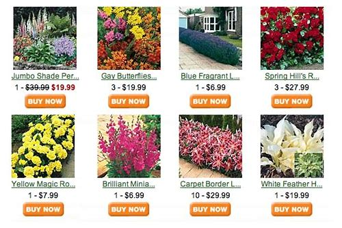 spring hill nursery free shipping coupon code