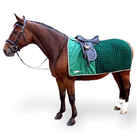exercise rug thermatex nordic exercise rug