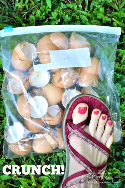 organic gardening use egg shells to deter slugs and snails