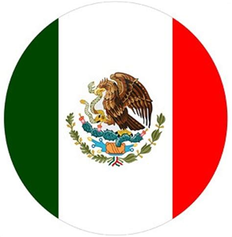 mexican flag led door projector courtesy puddle logo