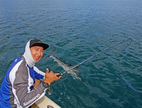 marlin boats history scotto au fishing articles bloggs
