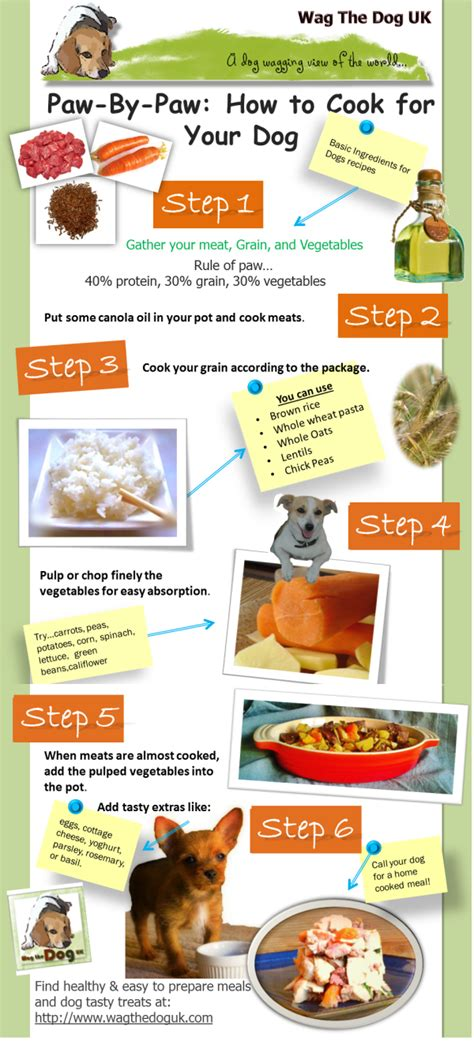 Should You Do All The Cooking by Infograph Paw By Paw How To Cook For Your In 6 Easy