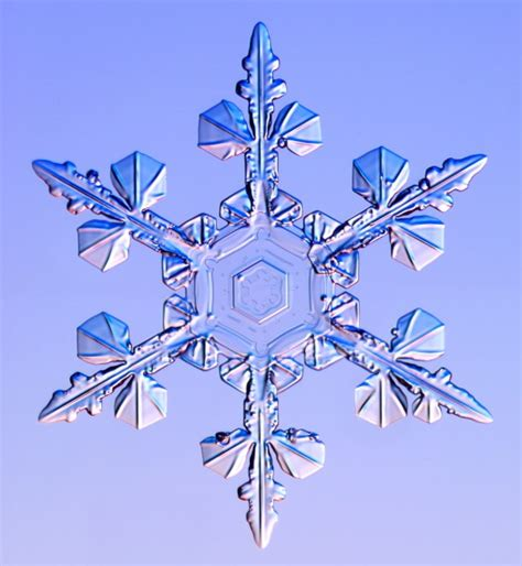 Snowflake And Snow Crystal Photographs | snowflake and snow crystal photographs