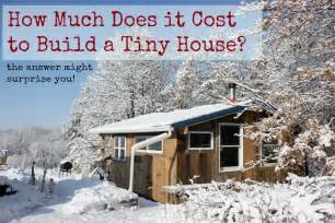 How much does it cost to build a tiny house here are two real life