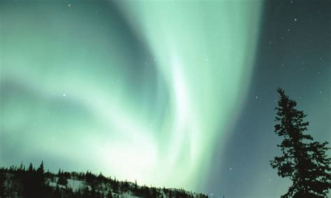 can you see the northern lights in fairbanks alaska where to see the northern lights in alaska westmark hotels
