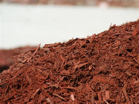 black mulch rochester ny roc city mulch black diamond mulch