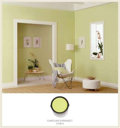 colorfully behr spotlight on citron pop
