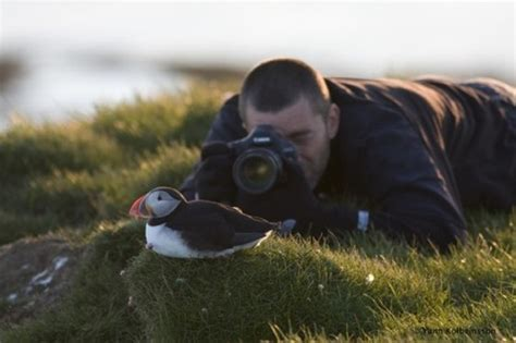a new bird trail in north iceland heritage destination