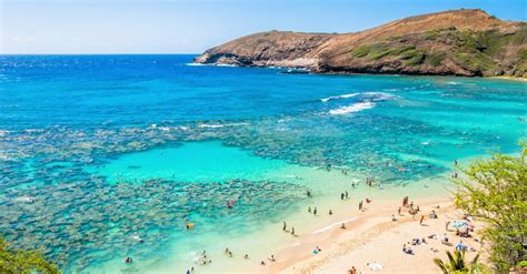 cheap flights to honolulu hi from las vegas nv for 267 trip taxes included