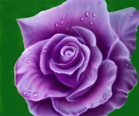 Wallpaper Salur Pink Atau Blue ungkapan semua dengan mawar of