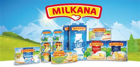 Cheese Milkana visuel pour camion beurre montfleuri et produits laitiers milkana al 233 o studio graphique