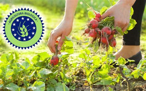 alimentazione bio prodotti bio alimentazione e salute