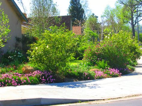 landscaping ideas for privacy on corner lot outdoor